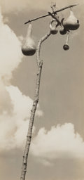 Photographs, Walker Evans (American, 1903-1975). Gourd-nests for the Martins, Hale County, Alabama, 1936. Gelatin silver. 7 x 3-3/8 i...