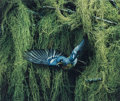 Photographs, Eliot Furness Porter (American, 1901-1990). Northern Parula Warbler, Male, Flying, Great Spruce Head Island, Maine, June 2...