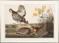 Obsoletes By State:Alabama, John James Audubon. Pinnated Grous - Plate 186 (HavellEdition). . ...