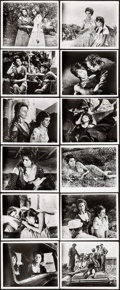 """Movie Posters:Foreign, Two Women (Embassy, 1960). Photos (20) (8"""" X 10""""). Foreign.. ... (Total: 20 Items)"""