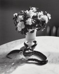 Photographs:Gelatin Silver, André Kertész (Hungarian, 1894-1985). Still Life with Snake, New York, 1960. Gelatin silver, printed later . 9-3/4 x 7-3...