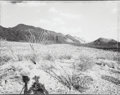 Photographs, Mark Klett (American, b. 1952). Standing Before the Solitario Mountains, Fresno City, Texas, September 15, 1989. Gelatin...