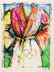 Jim Dine (b. 1935) Olympic Robe, from Official Arts Portfolio of the XXIVth Olympiad, Seoul, Korea, 1988 Lithograp