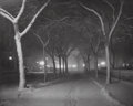 Photographs, Alfred Stieglitz (American, 1864-1946). An Icy Night, 1898. Photogravure, printed later. 5 x 6-1/4 inches (12.7 x 15.9 c...