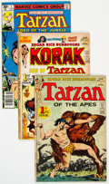 Bronze Age (1970-1979):Adventure, Tarzan Related Titles Short Box Group (DC/Marvel, 1970s) Condition: Average FN....
