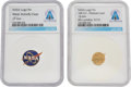 Explorers:Space Exploration, Neil Armstrong: Pair of NASA Logo Pins, Directly From The Armstrong Family Collection™, Certified and Encapsulated by Collecti... (Total: 2 Items)