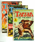 Bronze Age (1970-1979):Miscellaneous, Tarzan #207-217 Group (DC, 1972-73) Condition: Average FN-. Here'sa solid run of issues with stories and art by Joe Kubert.... (11Comic Books)