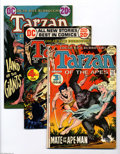 Bronze Age (1970-1979):Miscellaneous, Tarzan Group (DC, 1972-76) Condition: Average VF/NM. This groupincludes #209, 210, 211, 212, 213, 214, 215, 216, 217, 218, ... (15Comic Books)