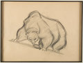 Animation Art:Production Drawing, The Fox and the Hound Bear Animation Drawing by Glen Keane(Walt Disney, 1981)....