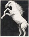 Fine Art - Painting, American, Joseph Piccillo (American, b. 1941). Horse Study, July 1980.Charcoal and pencil on paper. 34-1/2 x 27-1/2 inches (87.6 ...