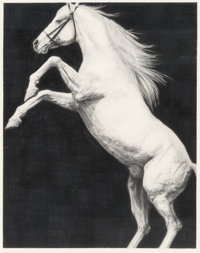 Joseph Piccillo (American, b. 1941) Horse Study, July 1980 Charcoal and pencil on paper 34-1/2 x