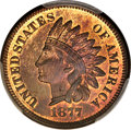 Proof Indian Cents, 1877 1C PR65+ Red and Brown PCGS Secure. CAC....