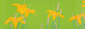 Fine Art - Work on Paper:Print, Alex Katz (b. 1927). Daylilies, 1992. Screenprint in colorson Arches paper. 14 x 39-3/4 inches (35.6 x 101 cm) (sheet)...