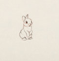 Animation Art:Production Drawing, Bambi Thumper Animation Drawings and Studies Group of 25 (Walt Disney, 1942).... (Total: 25 Items)