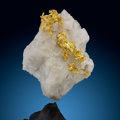 Minerals:Golds, Gold on Quartz . Mockingbird Mine (Talc & Lacy claim), Colorado area. Whitlock District, Bagby-Mariposa-Mount Bullion-...