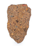 Meteorites:Stoney Irons, NWA 1227 Meteorite Slice. Ordinary Chondrite (LL3).Northwest Africa . Found: 1999. 3.50 x 2.07 x 0.11inches ...