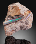 Fossils:Cepholopoda, Opalized Belemnite. Coober Pedy, Central North. SouthAustralia. Australia. ...