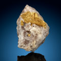 Minerals:Golds, Crystallized Gold on Quartz. Round Mountain District. Toquima Range, Nye Co.. Nevada, USA. ...