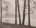 Photographs, Tom Millea (American, b. 1944). Redding, Connecticut, 1969. Platinum print, printed later. 3-5/8 x 4-5/8 inches (9.2 x 1...