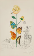 Prints & Multiples, Salvador Dalí (1904-1989). Rosa papillo, from Flora Dallinae, 1968. Etching, drypoint, and pochoir in colors on wove...