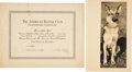 """Baseball Collectibles:Others, 1934 """"American Kennel Club"""" Certificate and German Shepherd Photograph from The Lou Gehrig Collection...."""