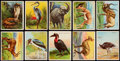 """Non-Sport Cards:Sets, 1909-10 T29 Hassan """"Animals"""" Near Set (75/80). ..."""