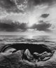 Jerry Uelsmann (American, b. 1934) Untitled, 1970 Gelatin silver 7-3/8 x 6-1/8 inches (18.7 x 15.6 cm) Signed and da