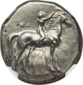 Ancients:Greek, Ancients: CALABRIA. Tarentum. Ca. 302-280 BC. AR stater or didrachm(21mm, 7.90 gm, 3h). NGC AU 4/5 - 3/5. ...