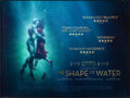 "Movie Posters:Fantasy, The Shape of Water (20th Century Fox, 2017) Rolled, Very Fine.British Quad (30"" X 40"") DS. Fantasy.. ..."