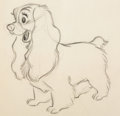 Animation Art:Production Drawing, Lady and the Tramp Animation Drawing by Ollie Johnston (WaltDisney, 1955)....