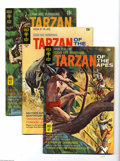 Bronze Age (1970-1979):Miscellaneous, Tarzan of the Apes #191-206 Group (Gold Key, 1970-72) Condition:Average VF-. This group includes # 191, 192, 193, 194, 195,...(Total: 16 Comic Books Item)