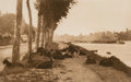 Photographs:Photogravure, Alfred Stieglitz (American, 1864-1946). Pastoral Landscape with Goats (On the Seine, Near Paris), 1897. Photogravure. 4-...