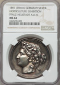 """German States:Pfalz, German States: Pfalz-Neustadt silver """"Horticulture Exhibition""""Medal 1891 MS64 NGC,..."""