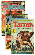 Bronze Age (1970-1979):Miscellaneous, Tarzan Group (DC, 1972-74) Condition: Average FN/VF. All of thesixteen issues in this lot have Joe Kubert stories and art. ...(Total: 16 Comic Books Item)