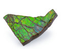 Fossils:Cepholopoda, Ammolite Fossil. Placenticeras sp.. Cretaceous. BearpawFormation. Alberta, Canada. 4.26 x 3.40 x 0.50 inches (10.82 x8.6...