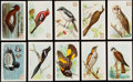 "Non-Sport Cards:Lots, 1915-38 Church & Dwight ""Useful Birds Of America"" Set Collection (10)...."