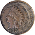 Errors, 1901 1C Indian Cent--Double Struck--XF45 ANACS....