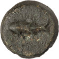 Ancients:Greek, Ancients: TAURIC CHERSONESUS. Carcinitis. Ca. 450-425 BC. AE (32mm, 23.60 gm, 6h), VF....