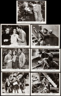 "Movie Posters:Horror, Werewolf of London (Realart, R-1951). Fine+. Photo (8"" X 10.25"") & Trimmed Photos (6) (Approx. 7.75"" X 10""). Horror.. ... (Total: 7 Items)"