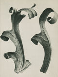 Photographs:Digital, Karl Blossfeldt (German, 1865-1932). Twenty Seven Book Plates from Urformen Der Kunst (27 works), 1941. Halftones. 1...
