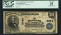 National Bank Notes:Pennsylvania, Richland, PA - $20 1902 Plain Back Fr. 652 The Richland NB Ch. # 8344 PCGS Apparent Very Fine 20.. ...