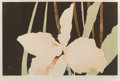 Prints & Multiples:Print, Deborah Ray (b. 1940). Canto I, II, III, IV (four works), 1979. Lithographs in colors on Arches paper. 21 x 29 inches (5... (Total: 4 Items)