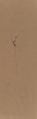 Willie Young (American, b. 1942) Root Drawing, 2001 Pencil on buff paper 28 x 9 inches (71.1 x 22.9 cm) (sheet) Init