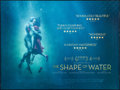 "Movie Posters:Fantasy, The Shape of Water (20th Century Fox, 2017). Rolled, Fine/VeryFine. British Quad (30"" X 40"") DS. Fantasy.. ..."