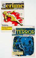 Magazines:Horror, Terror Illustrated #1/Crime Illustrated #1 Group (EC, 1955).... (Total: 2 Comic Books)