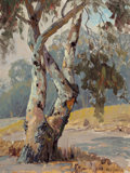 Fine Art - Painting, American, Paul Grimm (American, 1891-1974). Eucalyptus Tree. Oil onboard. 16 x 12 inches (40.6 x 30.5 cm). Signed lower right:...