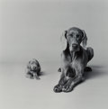 Photographs:Gelatin Silver, William Wegman (American, b. 1943). Untitled (Mother and Puppy), 1989. Gelatin silver, printed later. 10-1/4 x 10-1/4 in...
