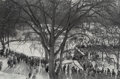 Photographs:Gelatin Silver, Paul A. McDonough (American, b. 1941). View in Central Park, 1978. Gelatin silver, printed later. 8-1/2 x 12-3/4 inches ...