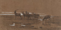 Rosa Bonheur (French, 1822-1899) The leading stag, 1864 Pencil and gouache on paper 13 x 26 inches (33.0 x 66.0 cm)