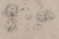 Works on Paper:Drawing, Rosa Bonheur (French, 1822-1899). Study of heads of lions and lionesses. Charcoal with white chalk. 11 x 16-3/4 inches (...